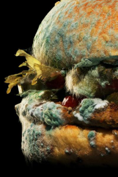 The Moldy Whopper - Burger King | Ogilvy